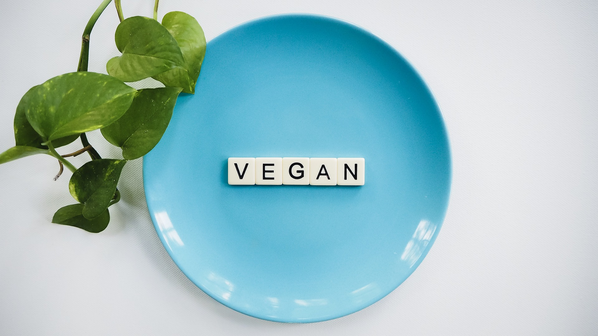 Voeding bij vegetarisme en veganisme